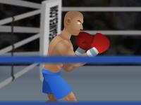 لعبة بطولة الملاكمة