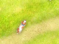 لعبة الكلب بوبي اللطيف وجمع الحلقات المطلوبة