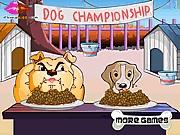 لعبة مسابقة الكلاب