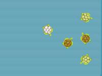 لعبة بلياردو السلحفاة