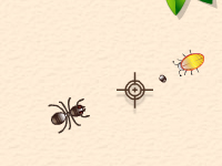 لعبة محاربة الصراصير