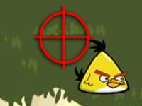 لعبة اكشن صيد الطيور الغاضبة بالبندقية