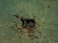 لعبة اكشن وقتال الموتي الخطيرين